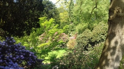 Rode Hall Gardens