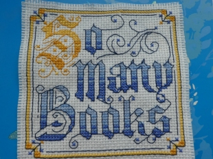 cross-stitched phrase reading so many books